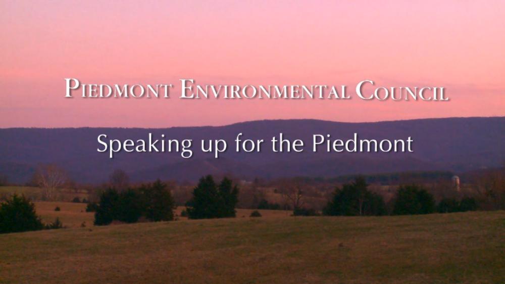 speaking_for_piedmont
