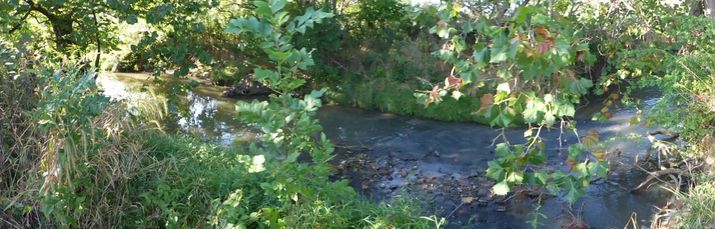Middle River flowing through our farm in Augusta County, Virginia.