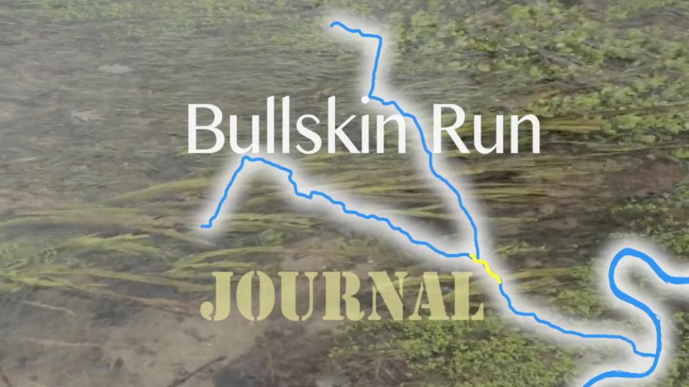 bullskin_run