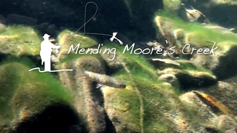 mending_moores_creek