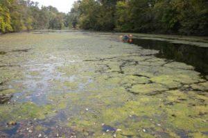 Shenandoah Riverkeeper Files Suit Against EPA