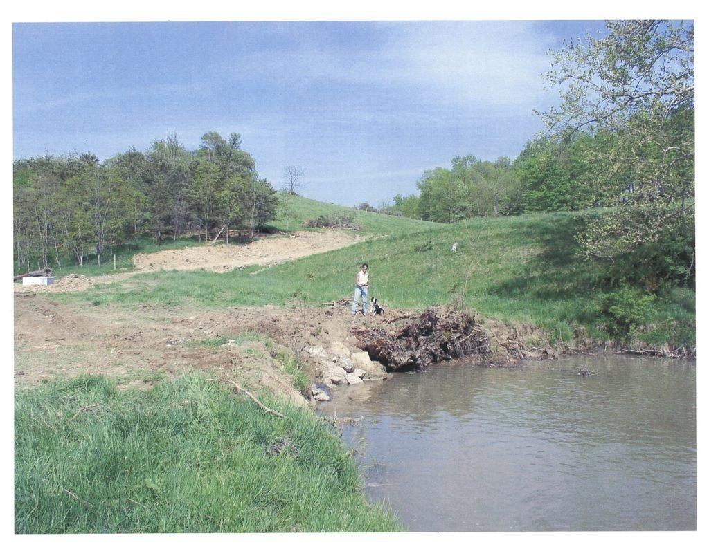 Bio-engineering on the river